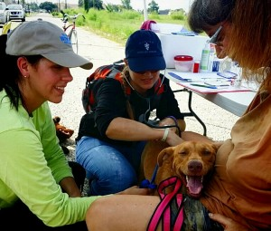 Volunteers, Brooke Bouldin and Dr. Christi Johnson, examine Jill and speak with her owner Linda about her health and needs.